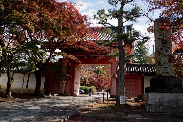 10京都の紅葉【真正極楽寺 (真如堂)】1