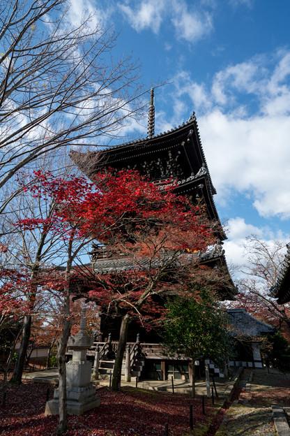 13京都の紅葉【真正極楽寺 (真如堂)】4