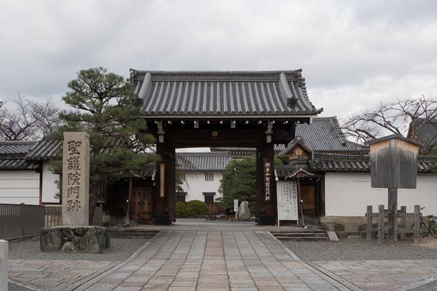 20京都の紅葉【聖護院】1