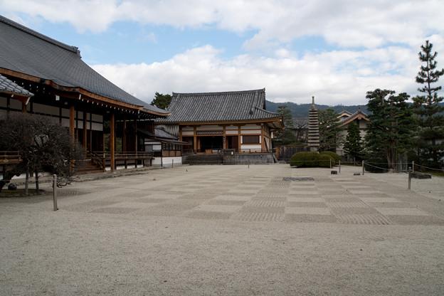 21京都の紅葉【聖護院】2