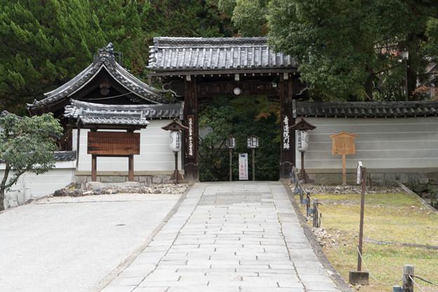 22京都の紅葉【青蓮院門跡】1
