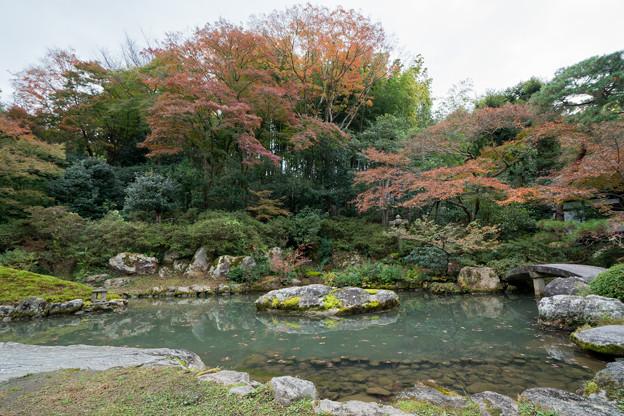 23京都の紅葉【青蓮院門跡】2