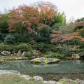 Photos: 23京都の紅葉【青蓮院門跡】2