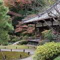 Photos: 25京都の紅葉【青蓮院門跡】4
