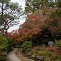 Photos: 27京都の紅葉【青蓮院門跡】6