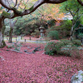 Photos: 28京都の紅葉【青蓮院門跡】7