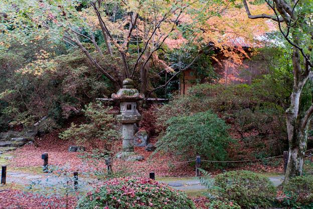 30京都の紅葉【青蓮院門跡】9