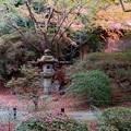 Photos: 30京都の紅葉【青蓮院門跡】9