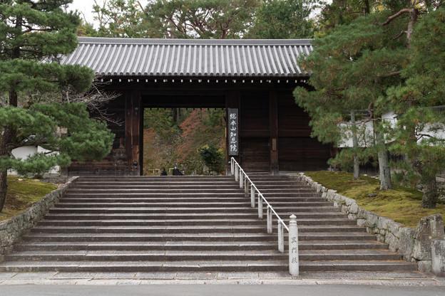 32京都の紅葉【知恩院】2