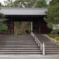 Photos: 32京都の紅葉【知恩院】2