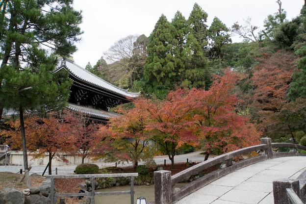 36京都の紅葉【知恩院】6