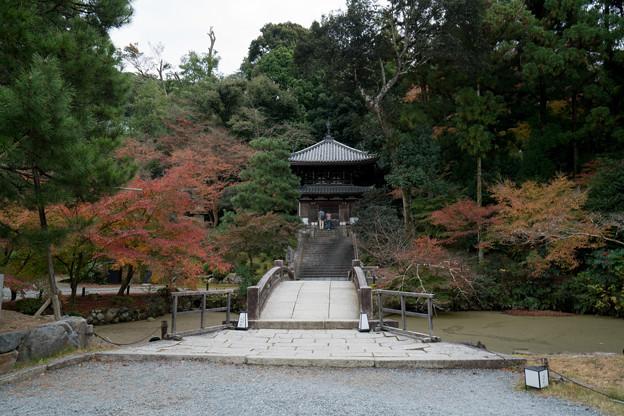 34京都の紅葉【知恩院】4