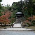 Photos: 34京都の紅葉【知恩院】4
