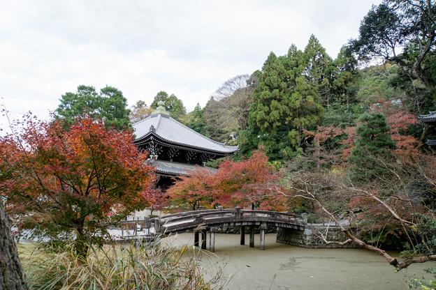 35京都の紅葉【知恩院】5
