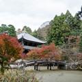Photos: 35京都の紅葉【知恩院】5