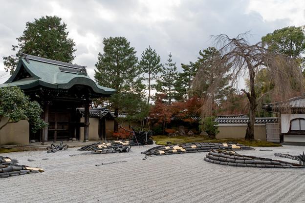 39京都の紅葉【高台寺】1