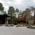 Photos: 39京都の紅葉【高台寺】1