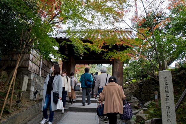 40京都の紅葉【高台寺】2