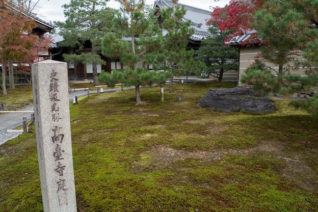 41京都の紅葉【高台寺】3