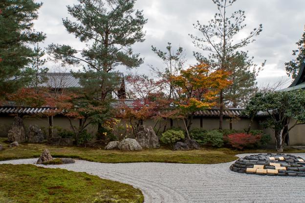 43京都の紅葉【高台寺】5
