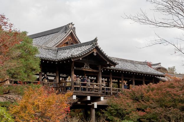 52京都の紅葉【東福寺】6