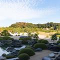 Photos: 14鳥取・島根旅行【足立美術館:庭園の眺め】4