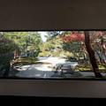 Photos: 15鳥取・島根旅行【足立美術館:庭園の眺め】5
