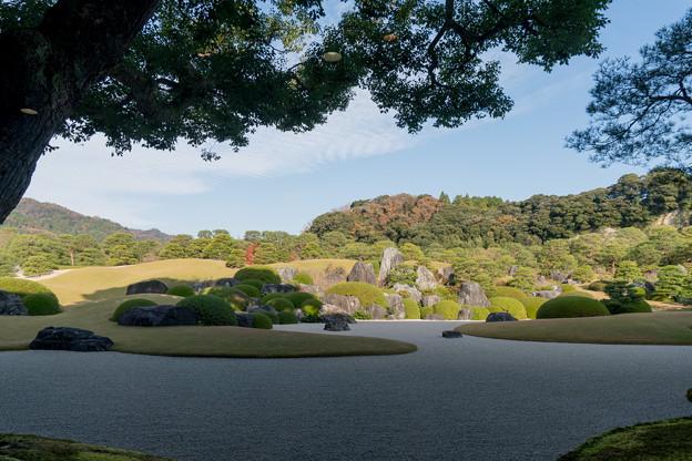 12鳥取・島根旅行【足立美術館:庭園の眺め】2