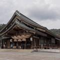 Photos: 21鳥取・島根旅行【出雲大社:拝殿】