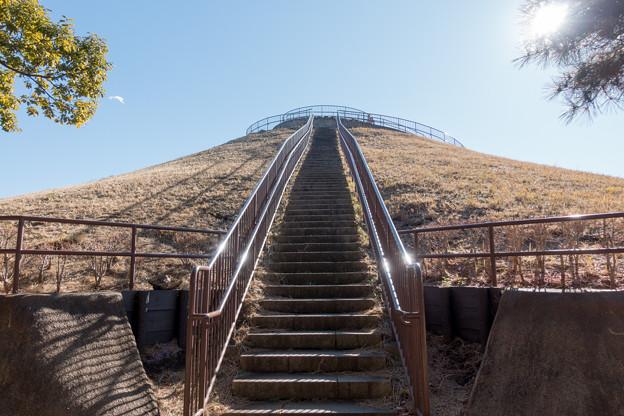 年末ウォーキング【川和富士公園:川和富士】1