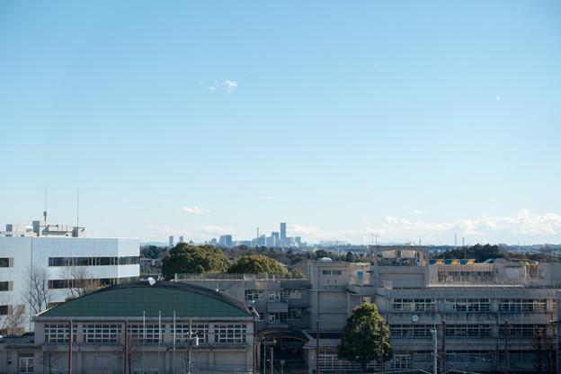 年末ウォーキング【川和富士公園:みなとみらい方面】3