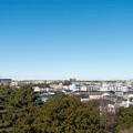 年末ウォーキング【川和富士公園:市が尾方面】2