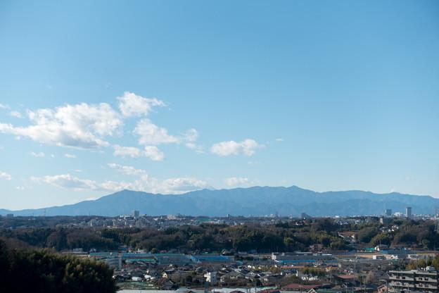 年末ウォーキング【川和富士公園:大山方面】2