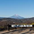 Photos: 01吾妻山公園【菜の花畑】