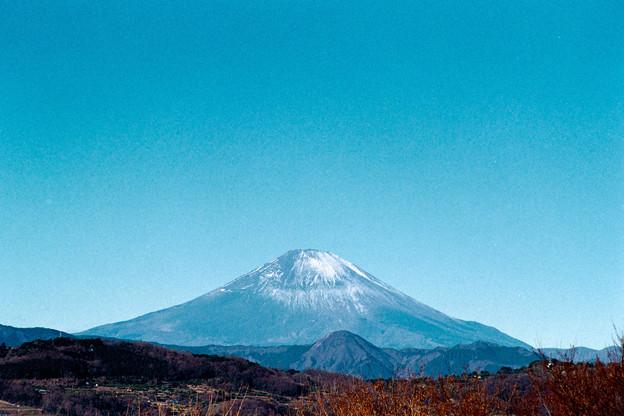 12吾妻山公園【富士山の眺め】銀塩NLP