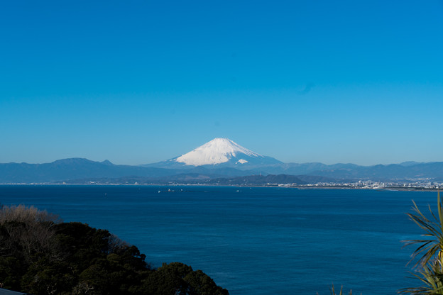 01【サムエル・コッキング苑から見る富士山】