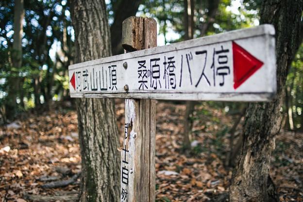 20210104 阿武山の標識 山頂