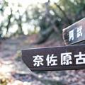 Photos: 20210104 阿武山の標識 奈佐原古道