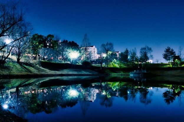 上の池の夜
