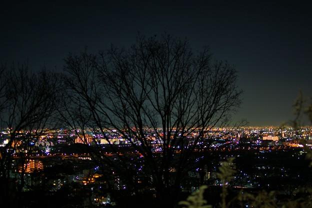 Photos: 夜明かりを望む