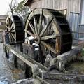 写真: 冬の水車