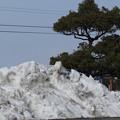 写真: 体育館の駐車場の雪の山3