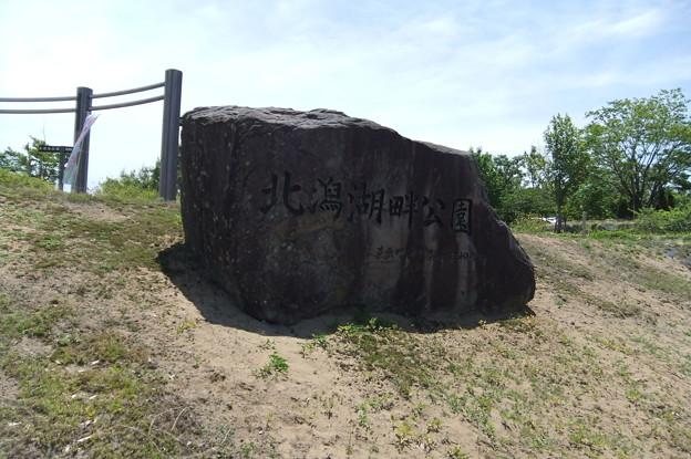北潟湖畔公園 1