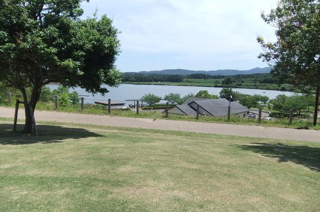 北潟湖畔公園 2