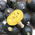 写真: 家庭菜園で採れた南瓜