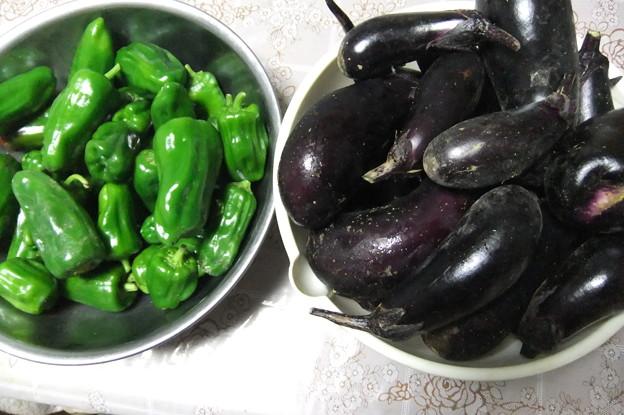 写真: 家庭菜園で採れたピーマンとナス