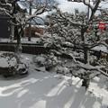 Photos: 庭の雪と影
