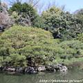 Photos: IMG_3200平安神宮・西神苑