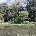 Photos: IMG_3201平安神宮・西神苑
