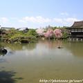Photos: IMG_3287平安神宮・東神苑